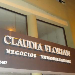 letras y logos corporeos claudia florian